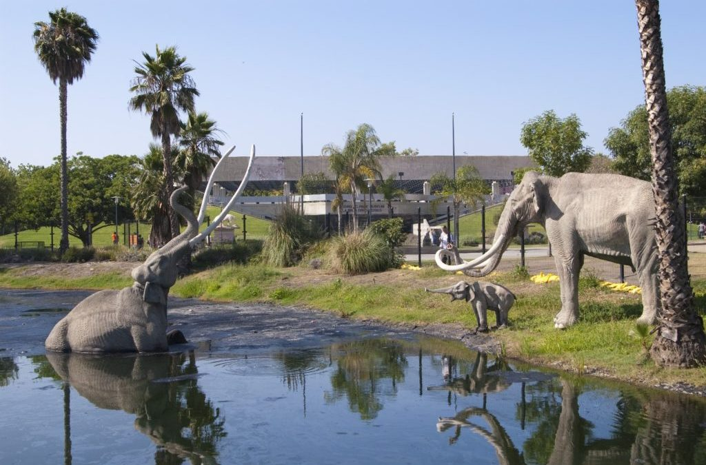 The La Brea Tar Pits & George C. Page Museum